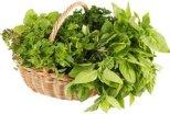 Травы, полезные чтобы мужского здоровья