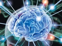 Golovnoj mozg