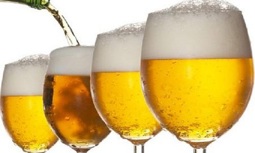 Pol'za piva