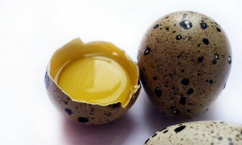 kushat' jajca v syrom vide